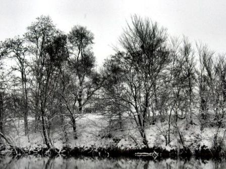 riverhivernale2006.jpg