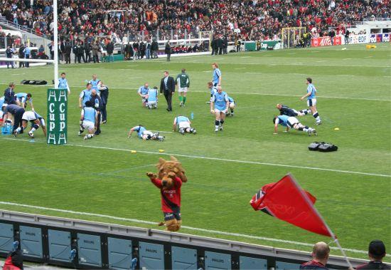 photographie de la mascotte de l'équipe de rugby de Toulouse, un lion près des joueurs de Cardiff Blues